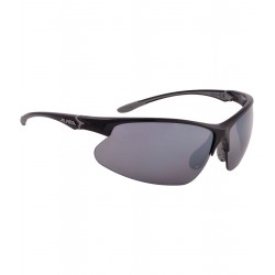 Sport glasses ALPINA Dribs 3.0