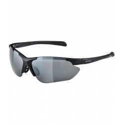 Sunglasses ALPINA DEFEY